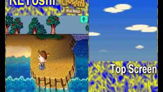 Lets Play Animal Crossing Wild World