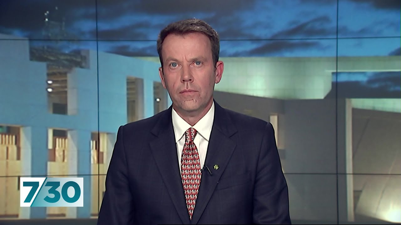 Education Minister Dan Tehan discusses NAPLAN and the latest results | 7 30