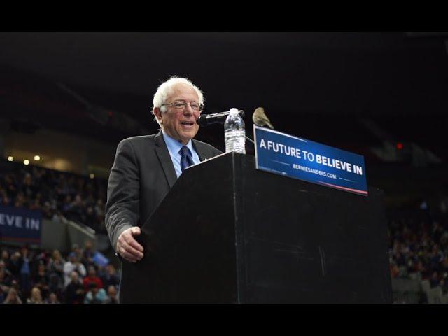 Birdie Sanders in Portland | Bernie Sanders