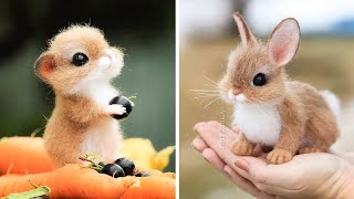 Animals SOO Cute! Cute baby animals Videos Compilation cutest moment - Cute animal planet #29