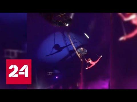 Воздушная гимнастка сорвалась с большой высоты в цирке Белгорода - Россия 24