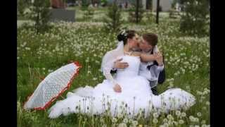 Свадьба Александра и Татьяны Черновых