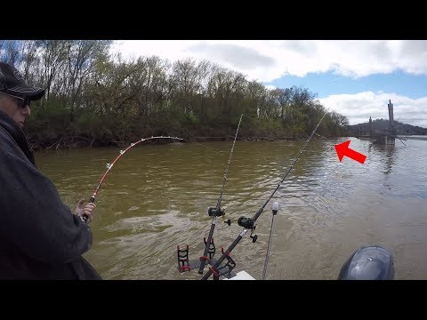 Catching Catfish In And Around Structure In Shallow Water