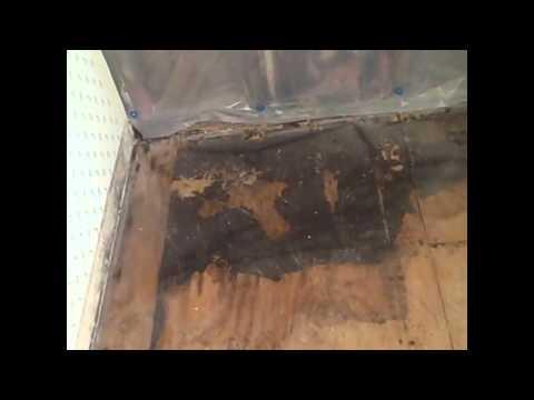free-mold-removal-salt-lake-city-utah-info-|-mold-remediation-help