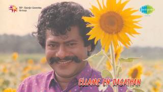Ellame En Rasathan | Veenaikku Veenai song