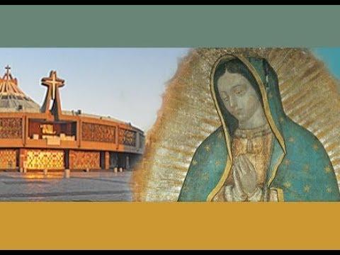 la-santa-misa,-martes-2-de-octubre,2018