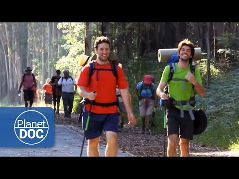 The Way of St. James (Camino de Santiago). Pilgrims | Documentary Part 7