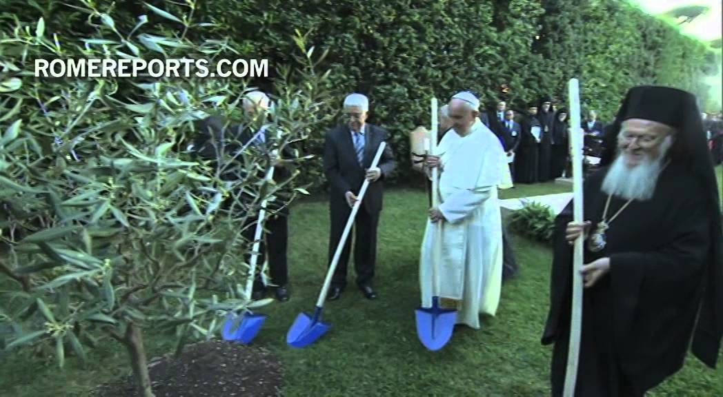 Presidents Of Palestine And Israel Plant An Olive Tree As A Symbol