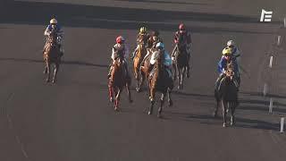 Vidéo de la course PMU PRIX DE CHATEAUROUX