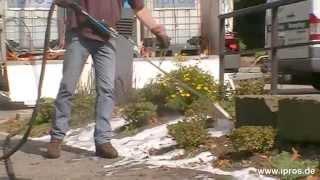 Unkrautbeseitigung Bzw. Unkrautentfernung Ohne Pestizide Oder Andere Giftige Stoffe