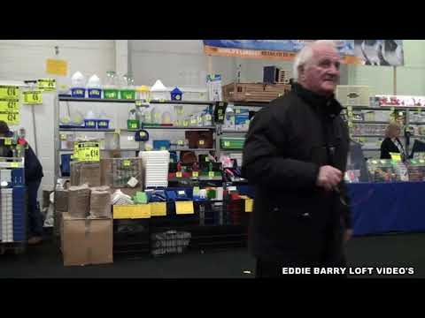THE DUBLIN PIGEON SHOW 2017