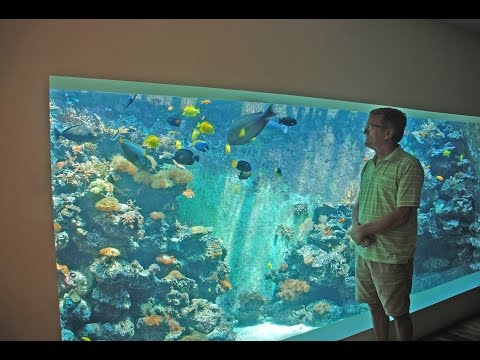 Eli's 30,000 liter reef tank - filtration and life support system