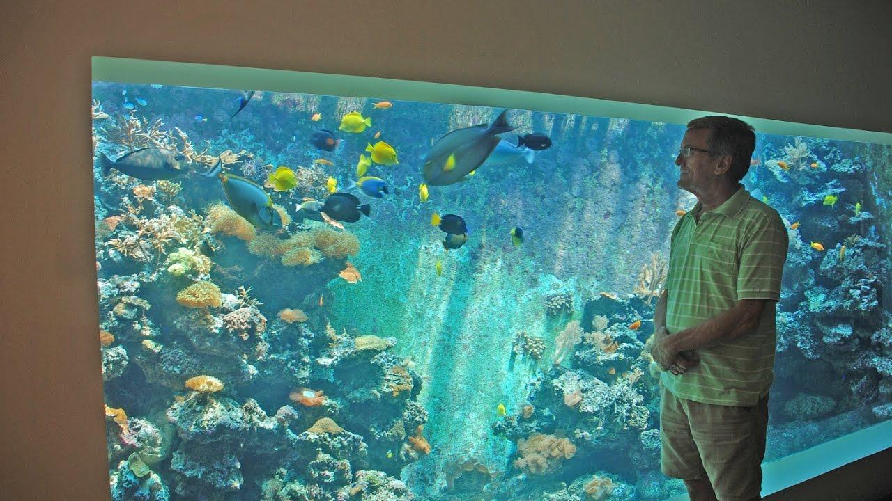 eli 39 s 30 000 liter reef tank filtration and life support system youtube. Black Bedroom Furniture Sets. Home Design Ideas