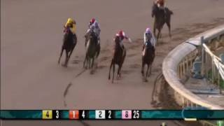 Battle Of Midway - 2017 Santa Anita Maiden Race - First Place Finish