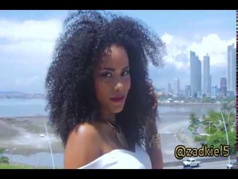 VIDEO MIX PLENAS MAS SONADAS PANAMA