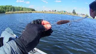 Соединил две БЛЕСНЫ и ПОЙМАЛ Рыбалка на озере Ловля щуки