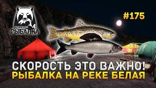 Скорость это Важно Рыбалка на реке Белая - Русская Рыбалка 4 175