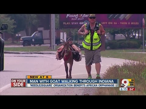 Goat Man walks through Tri-State with celebrity friend