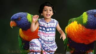 Parrot Toy Talk Video for Kids Talk About Favourite Toys