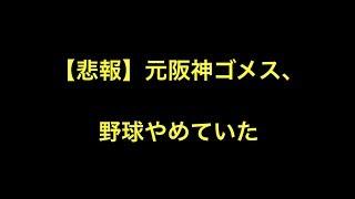 【悲報】元阪神ゴメス、野球やめていた ロッテは開幕後、 元阪神のゴメ...