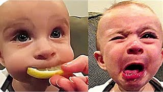 It's Time to LAUGH at every part of this video - Funny Babies Tasting Lemon for the first time