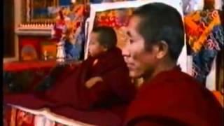 Khensur Rinpoche 5/5