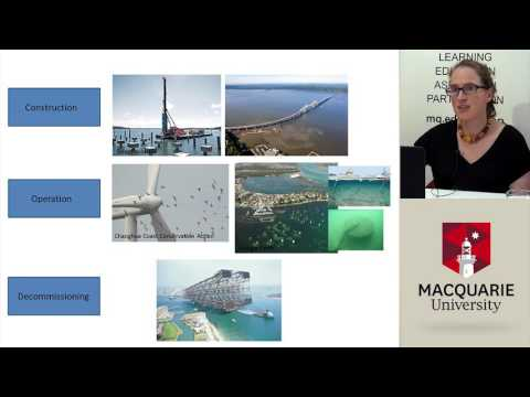 Combating Our Concrete Coastlines: Designing for Nature - LEAP Links Video Conference