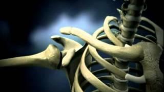 مختبرات العالم-الطب الشرعى