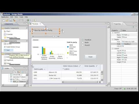 Display static and dynamic text in an application: SAP BusinessObjects  Design Studio 1 0