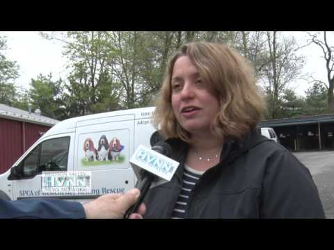 SPCA Of Westchester Helps Saves Dogs From Illegal Meat Market