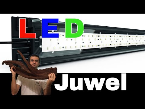 LED upgrade for Juwel Rio 240