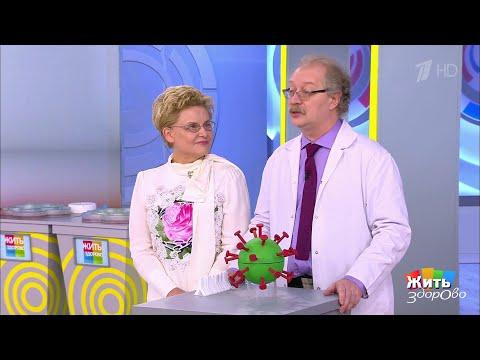 Хорошая новость про коронавирус: иммунитет есть! Жить здорово!  11.11.2020