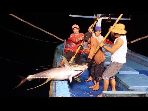 Câu Cá Ngừ Đại Dương. P1   Fishing for tuna