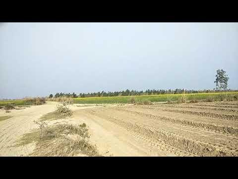20 acres lease land ,price 15000/acres
