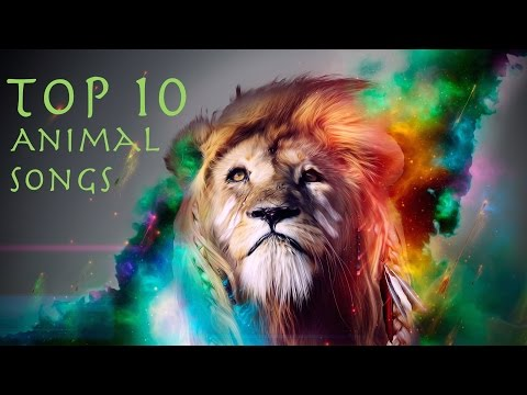 Top 10 EDM Songs Named After Animals (Download Links)