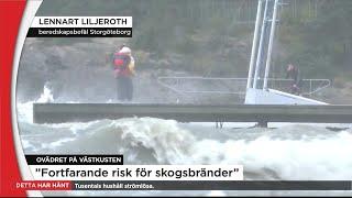 Ett femtontal stormskador i Göteborg - Nyheterna (TV4)