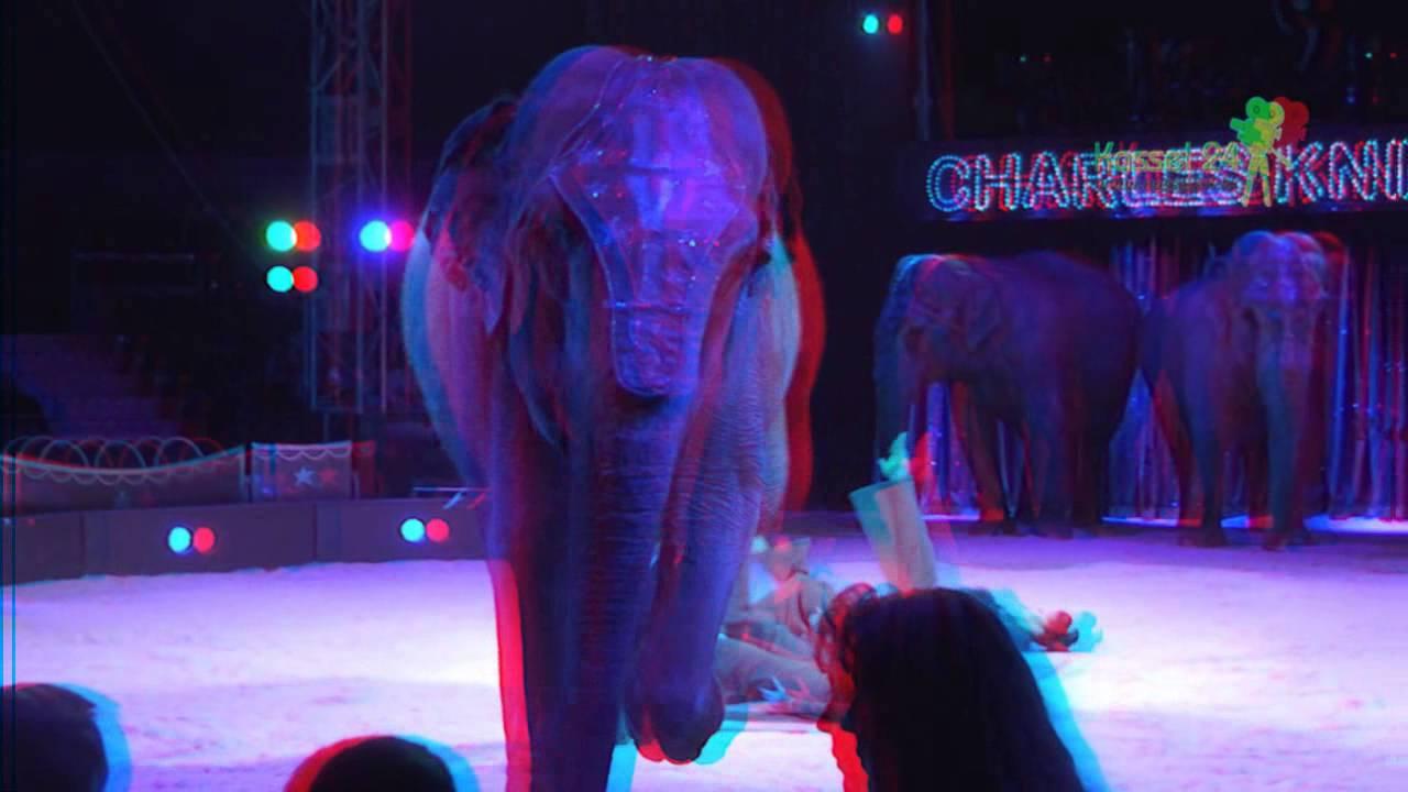 Zirkus Knie in Kassel 3D (Rot-Blau Brille)