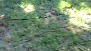 100410 Kugula Ace Run (3).mp4