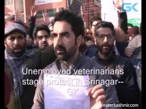 Unemployed veterinarians stage protest in Srinagar