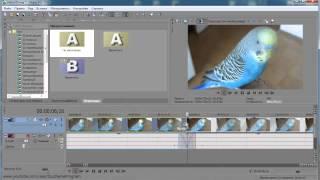 Как обрезать видео в програме Sony Vegas Pro 12. 0.  Izuchenie program.
