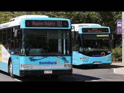 Buses In Cairns, Australia - The Great Barrier Reef!