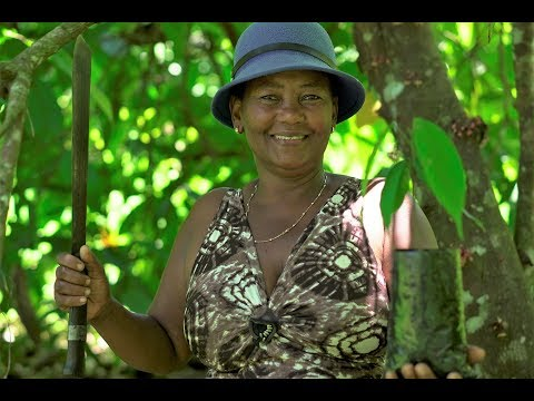 Projekt Madagascar – The Story of Felicia