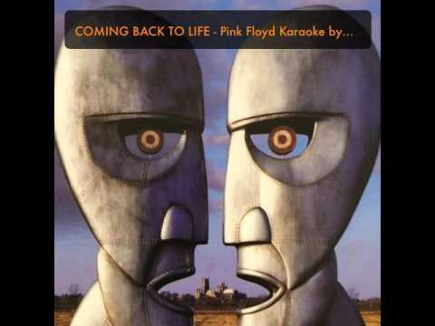 COMING BACK TO LIFE - Pink Floyd Karaoke by Rajiv Hede