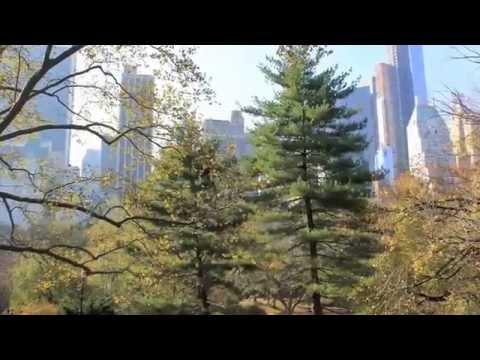 Central Park New York | USA Tourism Guides