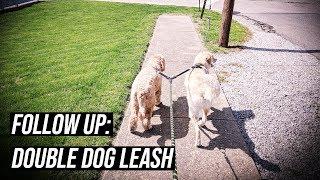 FOLLOW UP Head Tilt Double Dog Leash Review w/ Dougie The Doggie