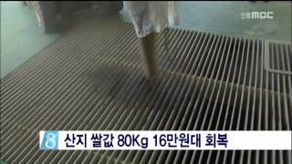 [안동MBC뉴스]산지 …