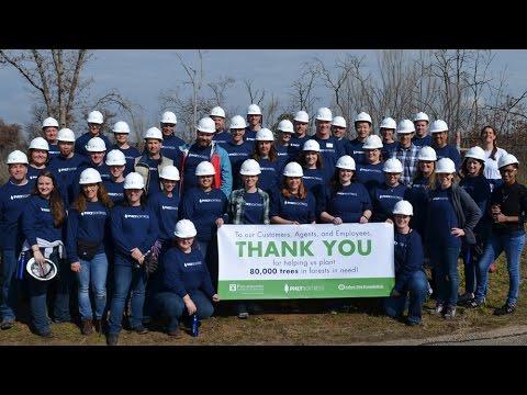 PHLY 80K Trees Planting (2016)