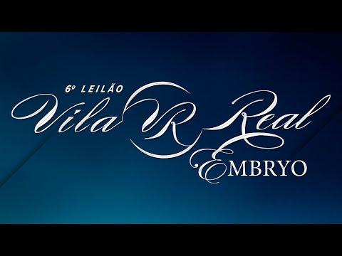 Lote 27   Bethina FIV VRI da Vila Real   VRI 09