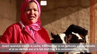 Tunisie : la formation professionnelle face au manque de débouchés économiques