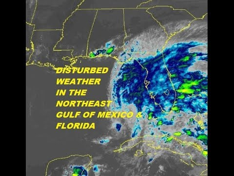 Disturbed Weather Florida Northeast Gulf of Mexico, Wet Weather Pattern Eastern US Week Ahead.